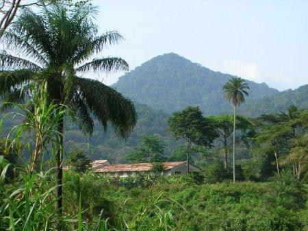 Гвинея Бисау